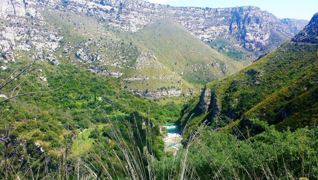The image shows the canyons and the river of Cavagrande natural reserve. There is flourishing nature and there are high rocky walls.