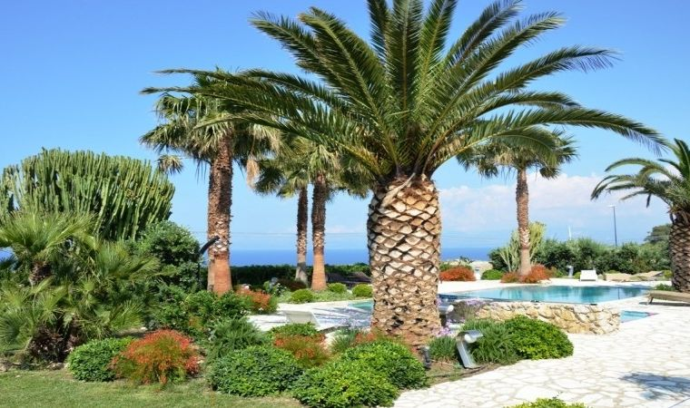 The tropical garden facing the Mediterranean sea