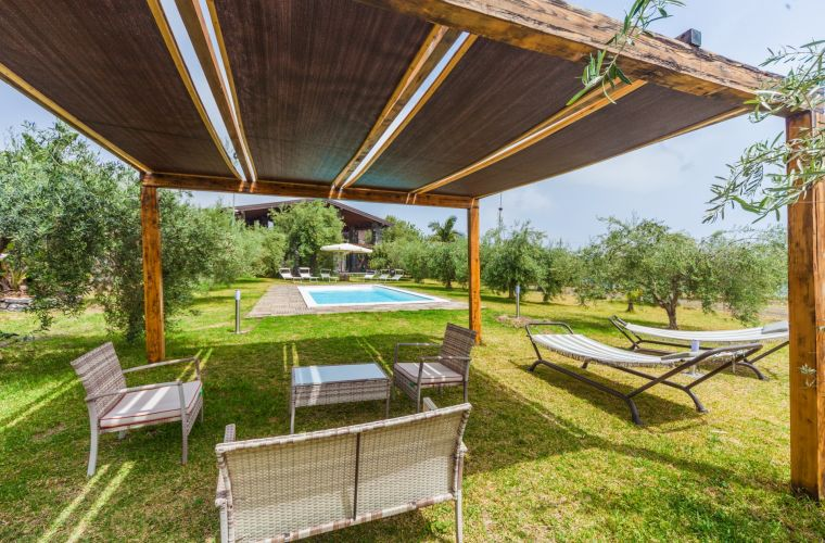 Meal among olive trees, pool and grass