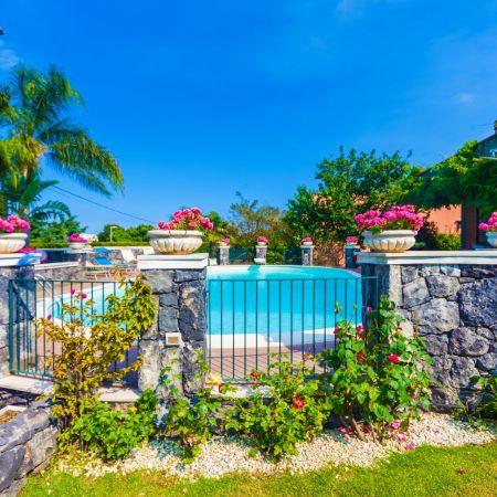 It's a garden rich in palm trees