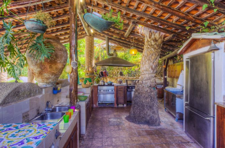 Palm tree inside the outdoor kitchen