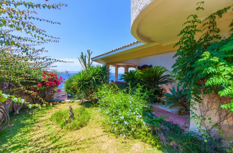 The lush Mediterranean vegetation of the villa