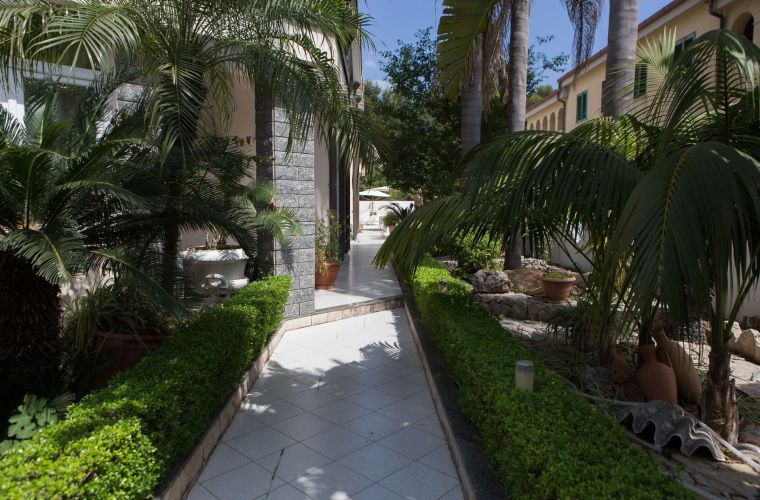 The entrance is followed by a hallway in the middle of the palm trees and cute and well finished alley.