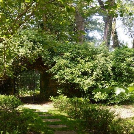 The lush park