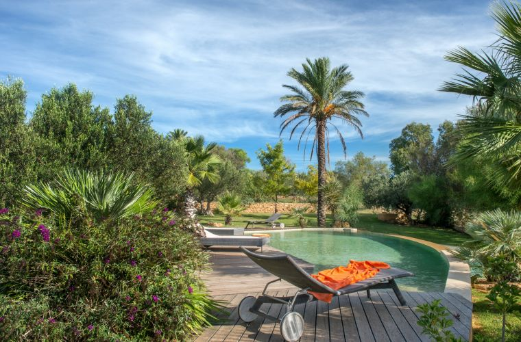 What to say about the garden: it's like a Paradise! Green grass, palms, olive trees and citrus groves